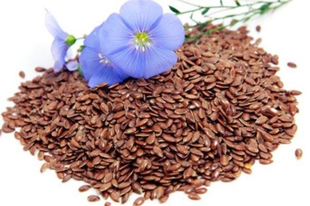 Семена льна - интересные факты