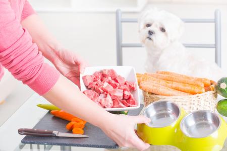 Как выбрать корм для животных