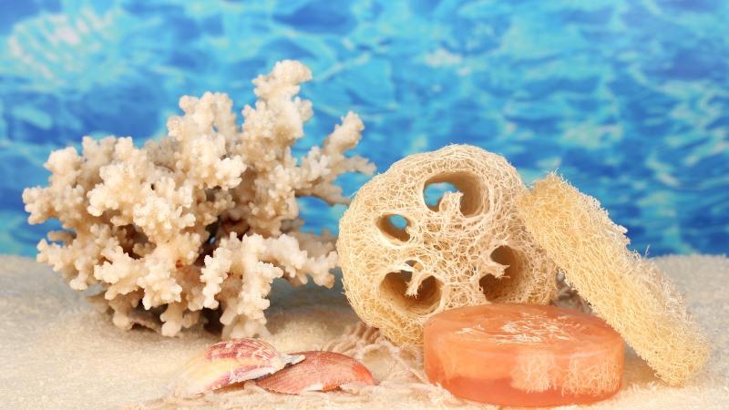 Кораллы с моря