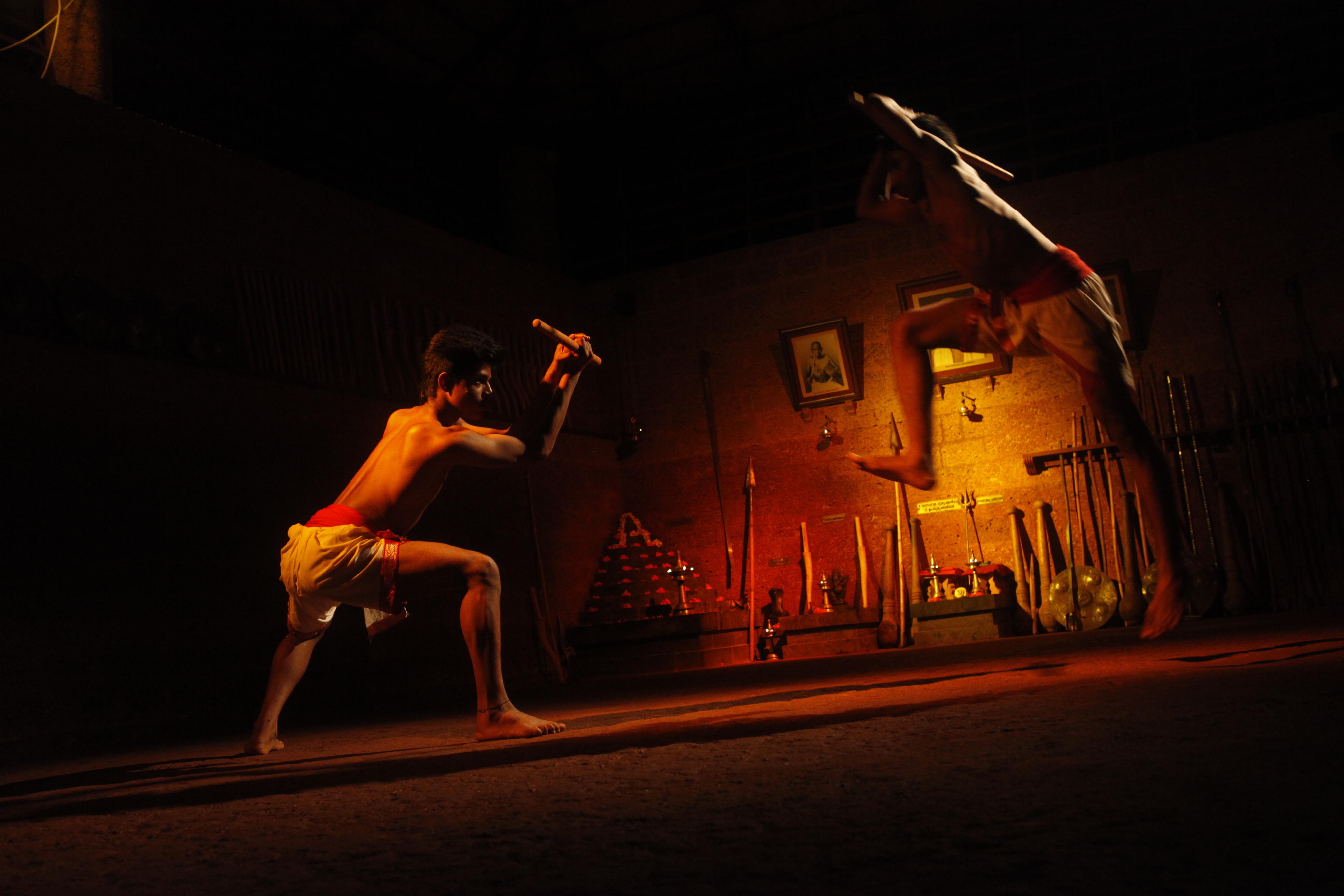Эстафету Дней культуры Индии в РФ продолжит Hindustari Kalari Sangam