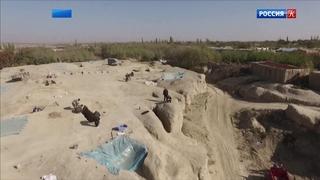 Археологи обнаружили в Китае более сотни древних гробниц