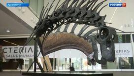Пополнение в семействе динозавров и другие события в мире культуры