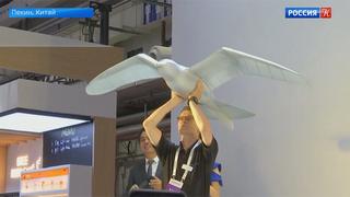 Чайка-дрон и робот-медуза</div><div class=