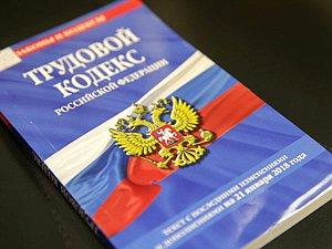 В ГД разъяснили, как граждане России имеют возможность трудиться удаленно