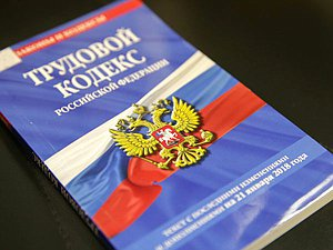 Вячеслав Володин отправил в профильный комитет поступившие в ГД уточнения в Трудовой правило о дистанц