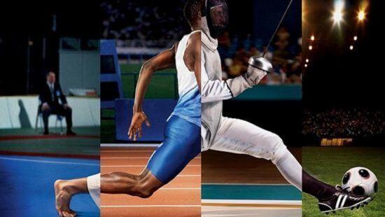 На какие виды спорта лучше всего ставить?