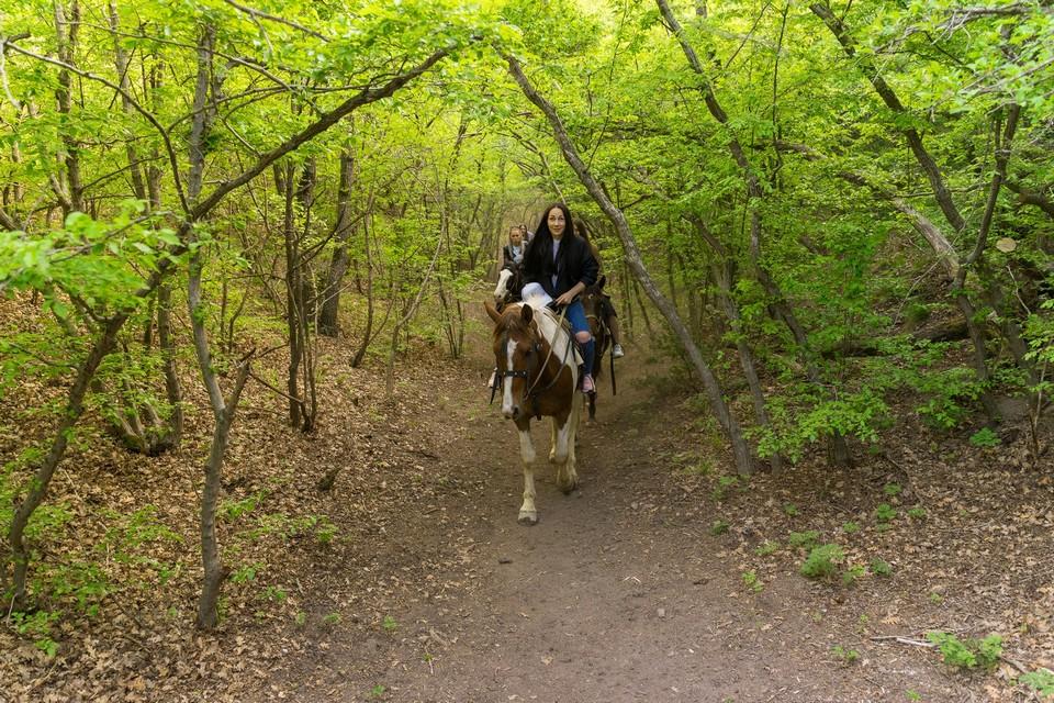 конная прогулка в Анапе