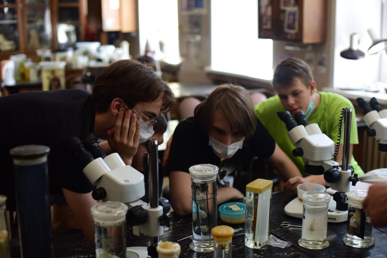 Российские школьники стали обладателями 4-х медалей на интернациональной биологической олимпиаде
