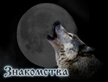 сайт знакомств одинокий волк