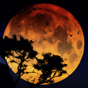 Полное затмение супер-Луны будет в ночь на 28 сентября